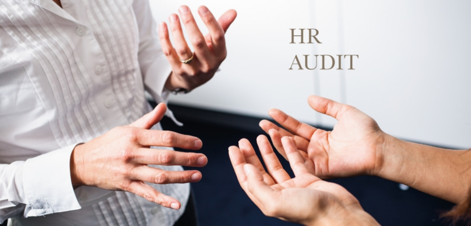 hr audit benefits